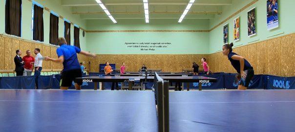2016.09.30. ping-pong