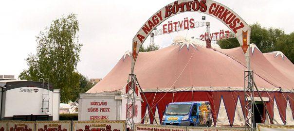 2016.10.07. a eotvos cirkusz nyiregyhazan