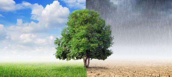eghajlatvedelmi vilagnap