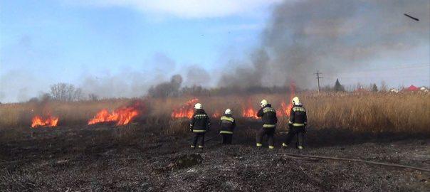 Minden nap automatikusan frissül az az online elérhető térkép, amely mindig az adott napon érvényes tűzgyújtási tilalmakat mutatja.
