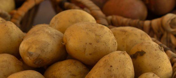 tobb nap mint krumpli