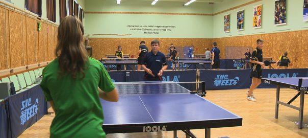 nyirbator ping-pong
